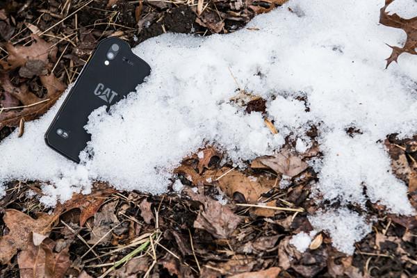 CatS61-Snow