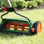 Rasenmähen: Die wichtigsten Tipps
