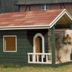 Hundehütte selber bauen – Anleitung