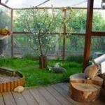 Gartengehege für Kaninchen: Worauf ist zu achten?