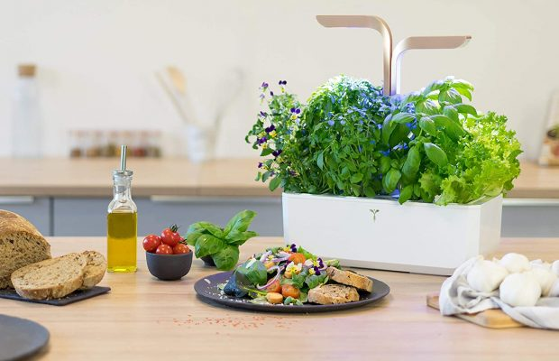 Smart Garden Project